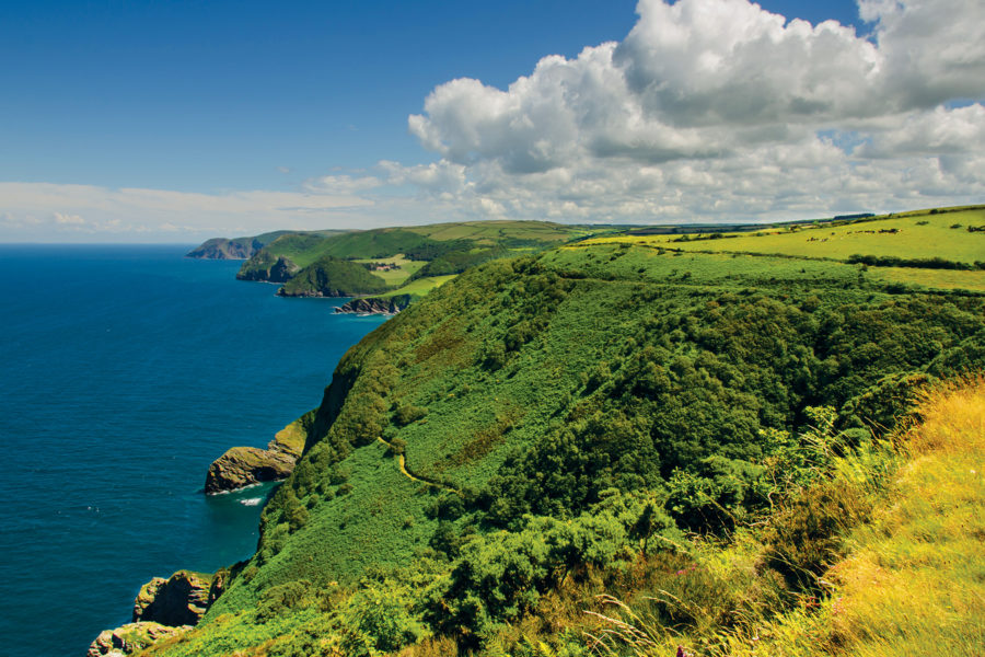 The South West coast path near Great Hangman, England's highest sea cliffs.